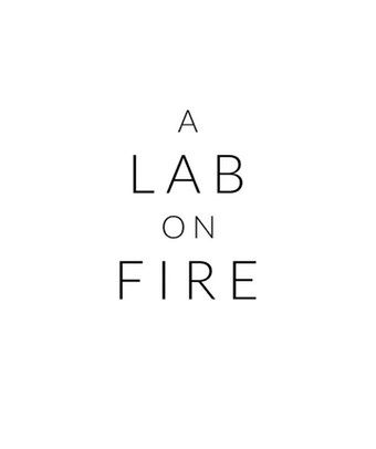 A Lab on Fire Samples
